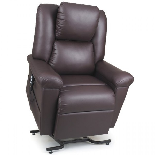 Golden DayDreamer Power Pillow Lift Chair in Coffee Bean